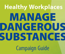 "Guide of the ""Healthy workplaces manage dangerous substances"" campaign"